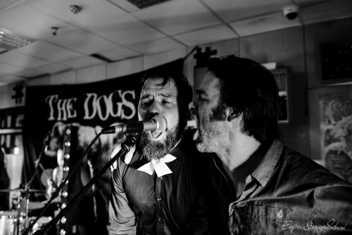 The Dogs, playing live recording concert at Big Dipper record store, Oslo, Norway 2016-03-05.